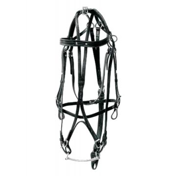 Racing Tack leather Bridle double headchek