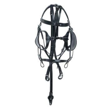 Bride double enrênement cuir Racing Tack
