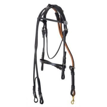 Leather race bridle and overcheck Wahlsten