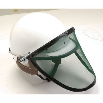 Visir for trotting helmets Wahlsten